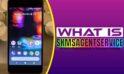 what is skmsagentservice